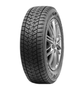 Купити Зима Bridgestone DMV2